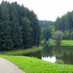 Still ruht der Hagerwaldsee