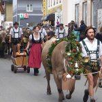 Die zweite Herde auf dem Weg zum Scheidplatz