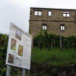 Die Y-Burg